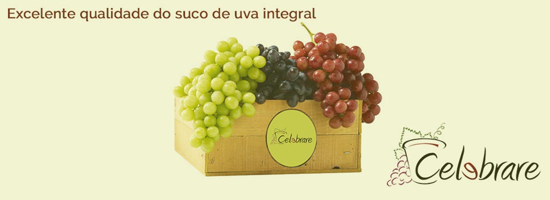 Excelente qualidade do suco de uva integral